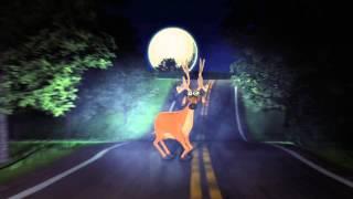 Hoạt hình 3D chú Nai thoát nạn