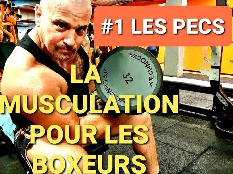 LA MUSCULATION POUR LES BOXEURS : COMMENT SE MUSCLER : EXERCICES DES PECTORAUX : EXERCICES DE BASE