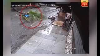 CCTV FOOTAGE: Heart wrenching! Woman died after tree falls..