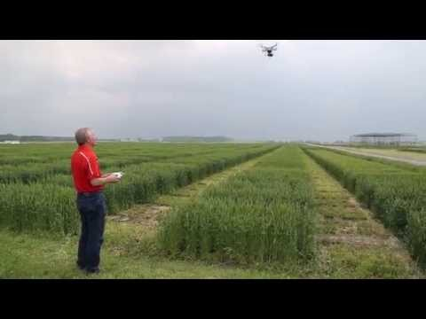 Drone on the Farm