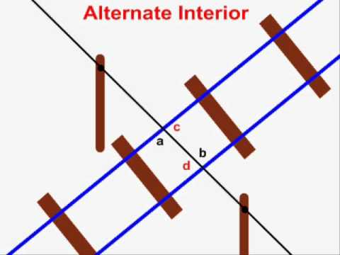 SameSide Exterior Angles Definition amp Theorem  Video