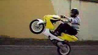 Wheeling Nitro Bergerac