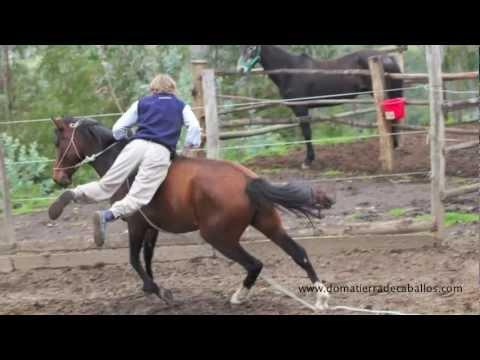 Doma de caballos.mov
