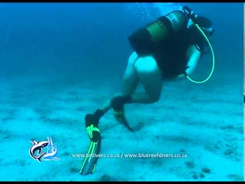 Naked diver in Malongane - YouTube