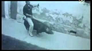 Hombre borracho montando al cerdo