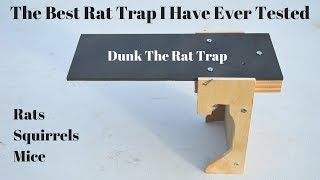 The All Time Best Rat Trap I Have Ever Tested. Dunk The Rat Trap In Action.