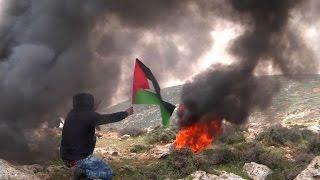 مواجهات بين فلسطينيين والجيش الاسرائيلي في الضفة الغربية   |   قنوات أخرى