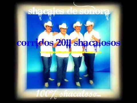 shacales de sonora - de lo mas nuevo 2011 _vete
