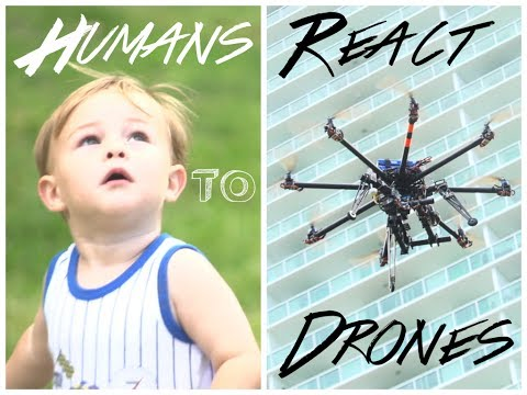 Humans React To Drones