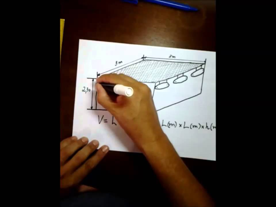 Quantidade inicial de til pias na gaiola youtube for Tilapias por metro cuadrado