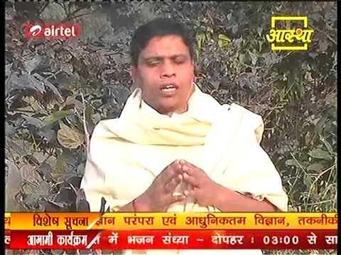 Ayurvedic Medicine सोनापाठा  ( Indian trumpet tree) Part 1/2