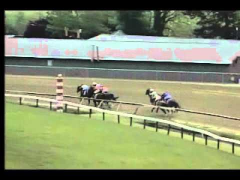 Vidéo de la course PMU SIR BARTON STAKES