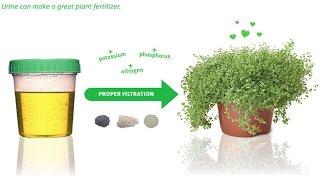 Uso de orina como fertilizante orgánico