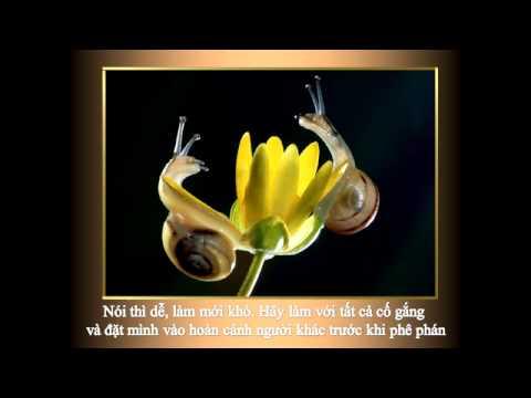 Danh Ngôn Nghe & Nói-Duy Hân; TH hoà âm-CLAVINOVA
