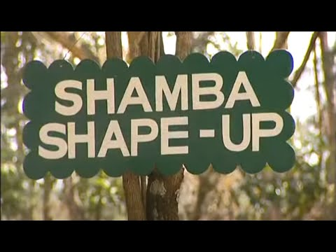 Shamba Shape Up (Swahili) - Bees, Chickens, Antibiotics Thumbnail