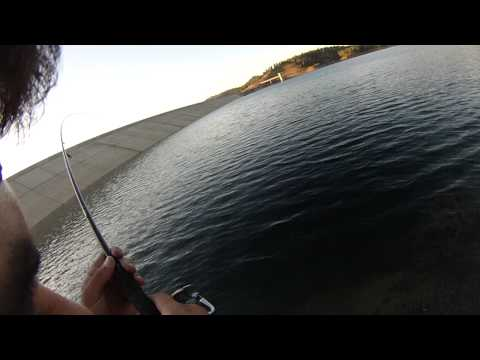 shore jigging in cyprus dams
