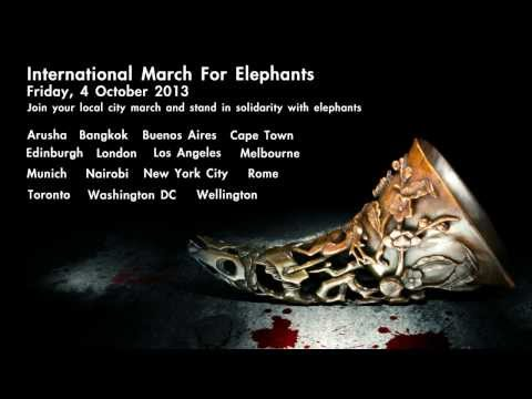 International March For Elephants ,Bangkok Thailand