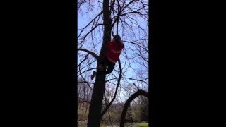 [Dyna-e International Inc Climbin' Trees!] Video