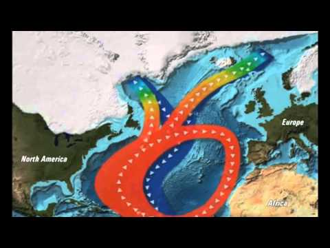 Abrupt Impacts of Climate Change