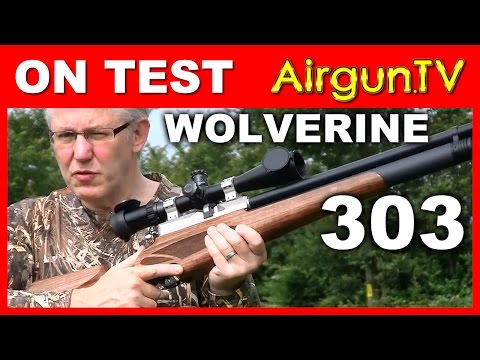 FULL TEST: Wolverine 303 caliber 100 ft/lb Air Rifle