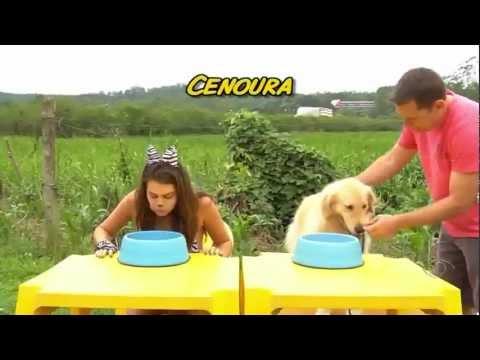 Panicats vs Cachorros (04/10/2012)