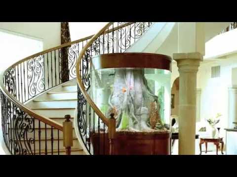 Aquarium Environments Custom Fish Tanks Youtube
