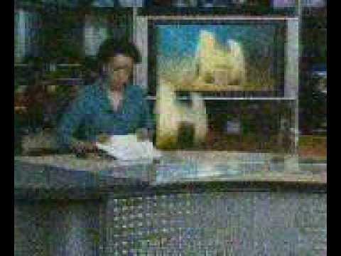 Encerramento do Jornal Hoje com Zileide Silva