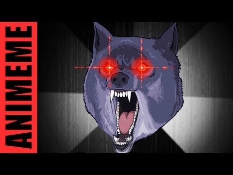 INSANITY WOLF,