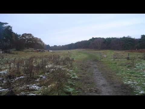 Stockgrove Country Park Olney Buckinghamshire