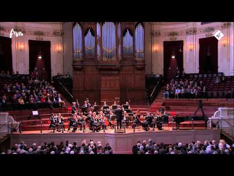 Symphony No. 5 in B flat major, D. 485 (Mantova Kamerorkest)