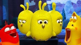 Larva - povstání kuřat