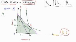 15. Učinek dohodka in substitucije – 1.del