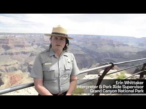 Grand Canyon National Park (The California Condor)