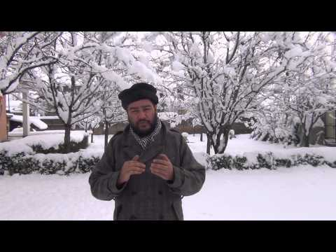 Snowfall gives white carpet reception to 2014 in Kashmir