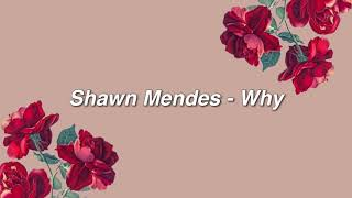 Shawn Mendes - Why { lyrics }