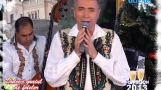 Nelu BITINA REVELION 2013 LIVE Muzica Populara Si De