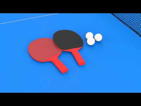Butterfly Easifold 12 Outdoor Rollaway Table Tennis Table