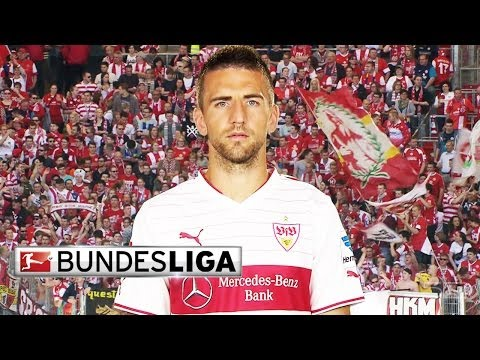 Vedad Ibisevic - Top 5 Goals