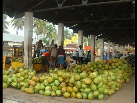 Bangalore Marathahalli India Indian Shopping Street Life In India