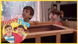 topsy and tim double playdate series 1 episode 3. Black Bedroom Furniture Sets. Home Design Ideas