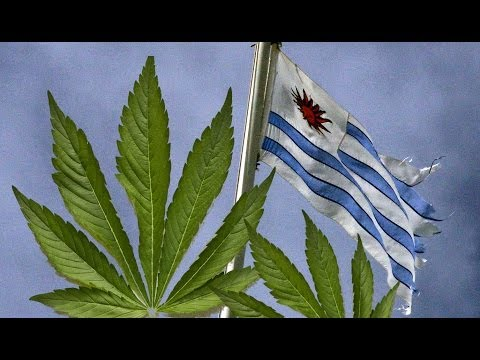 Uruguay 1st Country to Legalize Marijuana With Out Taxation, Undercutting Black Market.