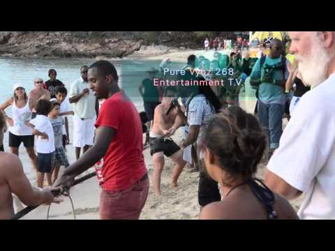 Shaggy Live Antigua Sailing Week 2014 Entertainment Flashback PURE VYBZ 268 ENTERTAINMENT TV