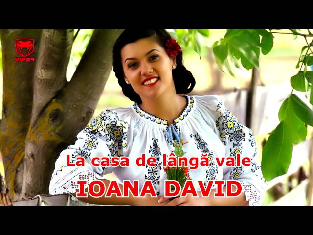 Ioana David - La casa de langa vale