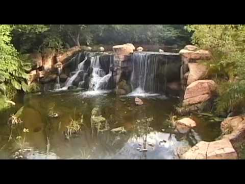Sun City Travel Guide