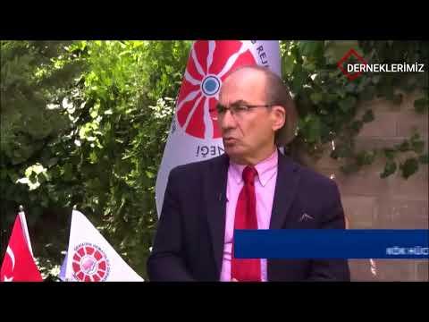 Prof Dr Osman İLHAN Kök Hücre