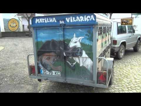 SANTA COMBA DA VILARIÇA - 6ª Montaria ao Javali