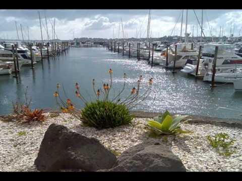 Clean Marina NZ