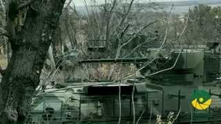 25 бригада ВДВ. Десант гартований в АТО