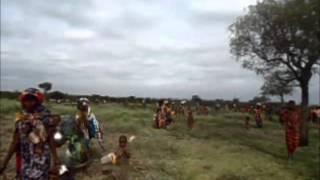 Weeyrarri Duguuginsa Shanyii Oromiyaa Bahaa Ona Anniyyaa Irratti Wayyaneen Bante Itti Fufaa Jira!