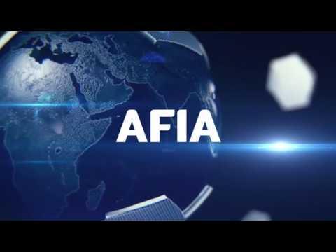 Copa AFIA México 2017 - CIBELES X NIPPON - DIAMOND - 12/11/2017